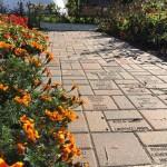 Garden walkway 2016